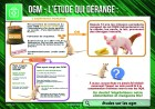 sa5_-_etudes_sur_les_ogm.jpg